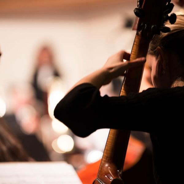 concerts-2015-violoncelliste